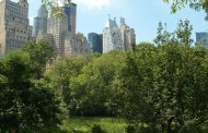 Living Green in NYC